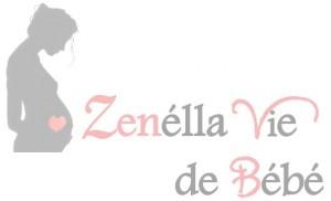 logo zelv bb